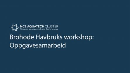 Brohode Havbruks workshop